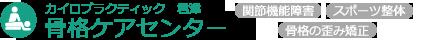 骨格ケアセンター|千葉県君津市の整体カイロ(関節機能障害・骨格の歪み矯正・スポーツ整体)